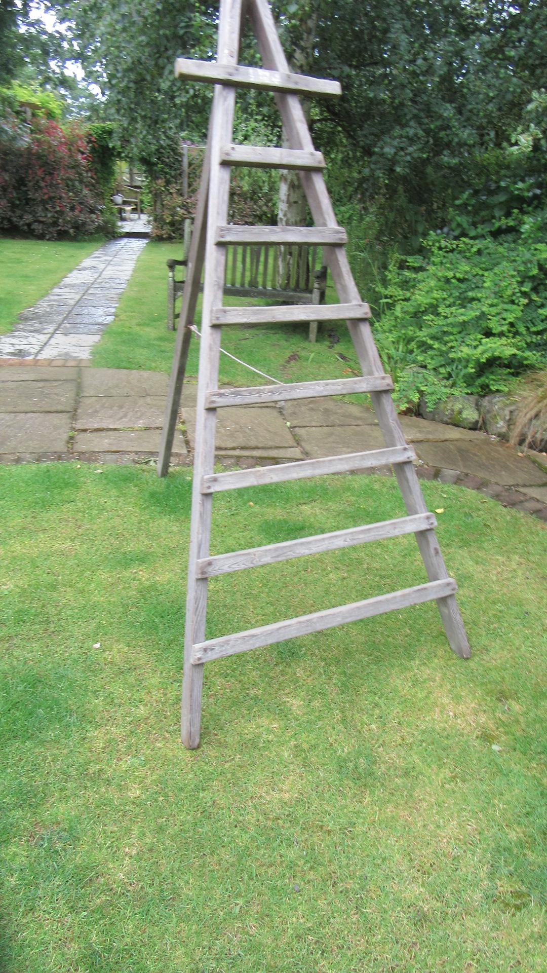Antique Country Pine Folding Fruit Picking Ladder Eras